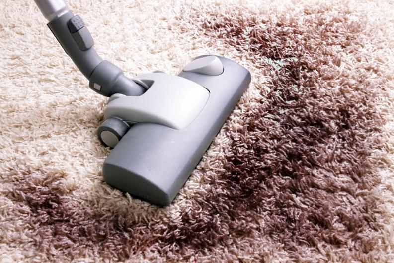 طرق تنظيف سجاد الفراء من شركة تنظيف المنازل بالبخار
